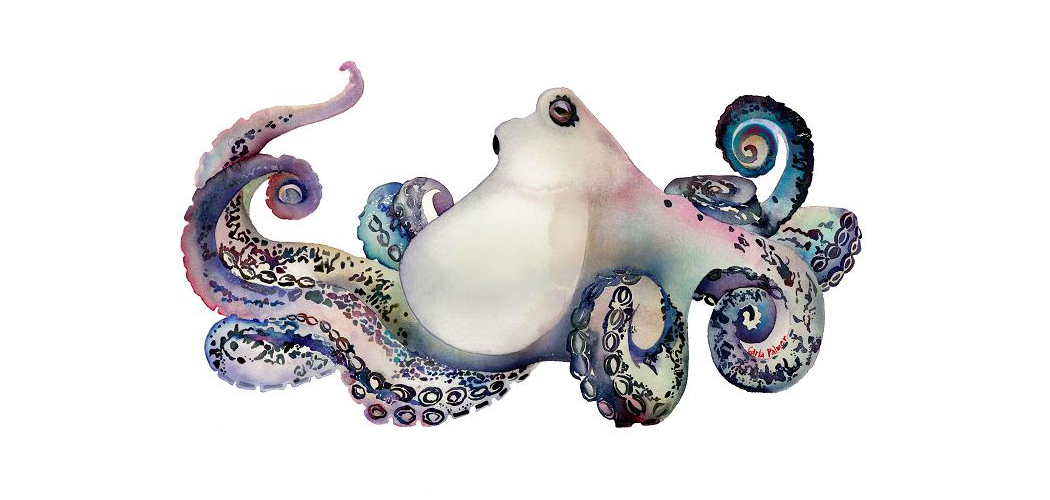 OCTOPUS by Carla Palmer